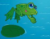 Diving Frog