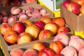 Fruit Stand Nectarine And Peaches