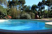 Sparkling Blue Swimming Pool