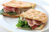 focaccia panini, italian sandwich