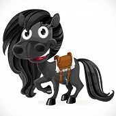 Cute cartoon black baby horse