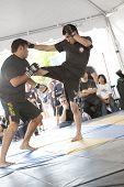 IMB Mixed Martial Arts