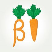 Beta-Carotene (provitamin A) healthy carrot