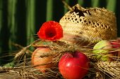 Apples, Wheat, Poppy And Hat