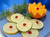 Celebratory Still Life. Citrus