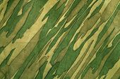 Closeup of camouflage pattern. Background or texture