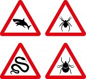 Vector tick, snake, shark and spider warning signs
