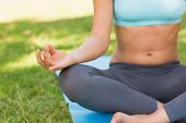 Close-up mid section of a sporty young woman in lotus pose at the park