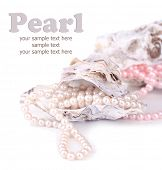 stock photo of pearl-oyster  - Shells with pearls - JPG