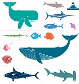 picture of devilfish  - Vector set which represent various sea animals - JPG