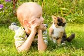 Little Boy With A Kitten