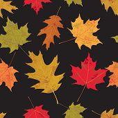 Colorful Tileable Autumn Leaves Illustration
