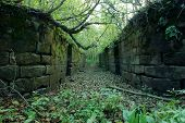 Abandoned Canal Lock