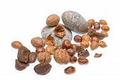 stock photo of brazil nut  - Mixed nuts  - JPG