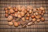 foto of brazil nut  - Mixed nuts  - JPG