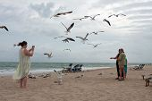 Seagulls Swarm Around Family Taking Photo On Beach