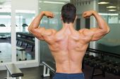 Rear view of a shirtless muscular man flexing muscles in gym