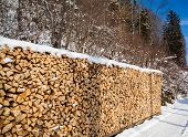 Firewood Stacked In Winter.  Wood Pile With Snow Stacked For Firewood