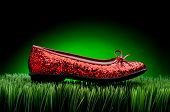 Sequined Red Slipper On Green Grass Against A Fading Green Background