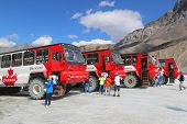 Massive Ice Explorers, specially designed for glacial travel, take tourists to Athabasca Glacier
