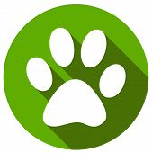 stock photo of flat-foot  - New Paw icon button flat - JPG