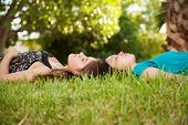 Napping Together At A Park