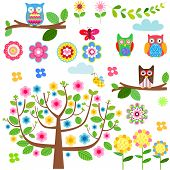 Vector set - owls, flowers