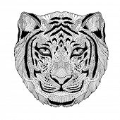 stock photo of psychedelic  - psychedelic tiger isolated - JPG