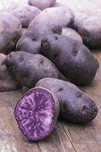 Vitelotte blue-violet potato (Solanum ajanhuiri Vitelotte Noir)