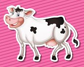 Illustration of a close up cow with pink background