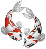 foto of koi  - Illustration of two kois swimming - JPG