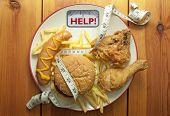 Junk Food Diet Concept