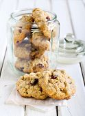 Oat, Cranberry Wholemeal Cookies