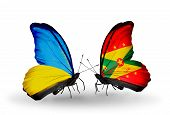 Two Butterflies With Flags On Wings As Symbol Of Relations Ukraine And Grenada