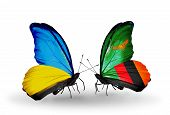 Two Butterflies With Flags On Wings As Symbol Of Relations Ukraine And Zambia