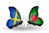 Two Butterflies With Flags On Wings As Symbol Of Relations Sweden And Bangladesh