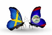 Two Butterflies With Flags On Wings As Symbol Of Relations Sweden And Belize