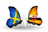 Two Butterflies With Flags On Wings As Symbol Of Relations Sweden And Brunei