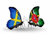 Two Butterflies With Flags On Wings As Symbol Of Relations Sweden And Dominica