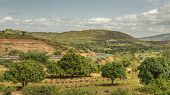 The Road From Harar To Jigjiga