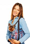 Yorkshire Terrier in dog's carrying bag with woman
