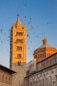 Swallows flight around a castle