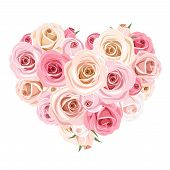 Heart bouquet of pink roses. Vector illustration.