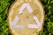 wooden cut on green grass and paper recycle symbol