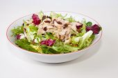 image of escarole  - Chicken salad with tomatoes and raisin in a white bowl. Isolated over white background ** Note: Shallow depth of field - JPG