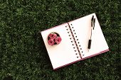 Notepad And Vase On Turf