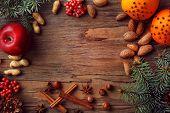 stock photo of hazelnut tree  - Fruits with nuts - JPG