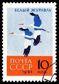 Vintage  Postage Stamp. White Crane.