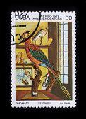 Post Stamp. Birds - Ara Tricolor