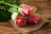 Three Beautifull Pink Roses On Jute Cloth